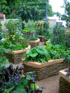 Good golly these are sweet!! These raised beds look like willow baskets!! Want, want want!!!