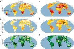 Quantifying the benefit of early #climate change mitigation in avoiding biodiversity loss in NATURE magazine