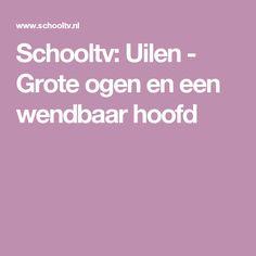 Schooltv: Uilen - Grote ogen en een wendbaar hoofd