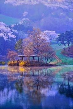 Choongnam Seosan, South Korea. Imagine how peaceful this would be