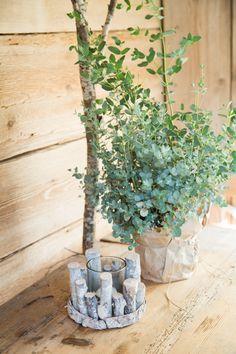 Planter Pots, Inspiration, Trends, Home, Home Decor Accessories, Deco, Biblical Inspiration, Ad Home, Homes