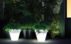 Light up your yard in a way that will truly get you noticed with BOXHILL's Illuminated LED Classic Planter. We love setting these planters to white, and using them to illuminate a poolside -- capable of holding big bushes and shrubs! Learn more at www.shopboxhill.com