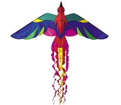 """pictures of kites 