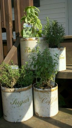 Recycle & reuse old kitchen tins into flower or herb planters!