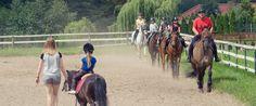 #Koń #PałacMortęgi #wypoczynek #mazury #relaks