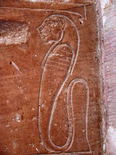 "dwellerinthelibrary: "" A lion-headed uraeus in the Temple of Dakka. Ancient Artifacts, Ancient Egypt, Ancient History, Ptolemaic Dynasty, Religion, Modern History, Prehistory, African History, Archaeology"