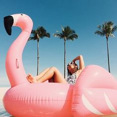 Luxury flamingo float over 6' | funboy.com