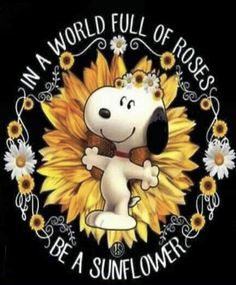 Snoopy Images, Snoopy Pictures, Charlie Brown Und Snoopy, Snoopy Und Woodstock, Sunflower Home Decor, Snoopy Wallpaper, Snoopy Quotes, Peanuts Snoopy, Office Art