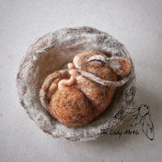 Little sleeping dormouse is looking for a new home, at the moment she lives at my Etsy shop: www.etsy.com/shop/theladymoth #dormouse #dormice #mouse #mice #needlefelting #felting #sculpture #sleeping #cute #etsy #etsylisting #cambridge #cambridgeuk #cambridgemade #cambscreativetreasures #ukartists #art #forsale #wildlife #nature #natureinspired #nest #textileart #fibreart #wool #handmade