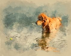 "Figure out even more relevant information on ""golden retriever puppies"". Golden Retriever Art, Watercolor Artwork, Watercolor Print, Dog Artwork, Digital Print, Pastel Art, Dog Portraits, Animal Paintings, Art Studios"