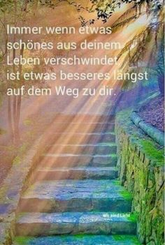 #stimmt #nicht #immerStimmt nicht immer Outdoor Beds, Funny Quotes, Funny Memes, Out Of Body, Going To Rain, Life Guide, Astral Projection, Visual Statements, Take A Nap