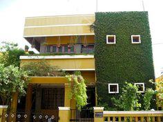 casa con muro verde de plantas enredaderas