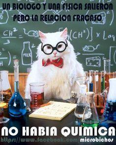 29 New ideas science humor memes chemistry cat Chemistry Cat, Math Jokes, Nerd Jokes, Nerd Humor, Science Cat, Science Puns, Science Cartoons, Funny Shit, Funny Jokes