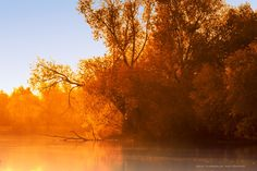 Autumn morning by Natalia Flora on 500px