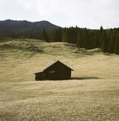 Great beauty of natural simplicity -   Abandoned cabin in Bavarian Alps near Unterwossen, Germany.  Contributed by Foster Huntington.