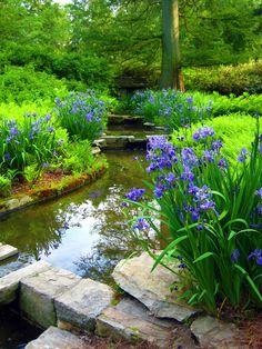 Garden Stream By Onceuponamoment Outdoor Pond Tips Garden Stream, Bog Garden, Shade Garden, Garden Cottage, Dream Garden, Outdoor Ponds, Ponds Backyard, Outdoor Gardens, Garden Ponds