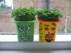cress & watercress, I grow seeds every week of the year. Ready supply at hand at any time. Tops any salad. Crafts For Kids To Make, Kids Crafts, Easy Crafts, Art For Kids, Cress Heads, Holiday Club, Make Do And Mend, Small Potted Plants, Spooky Halloween
