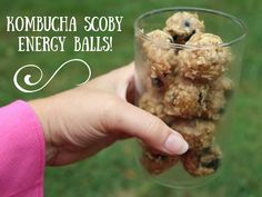 Kombucha Scoby Energy Date Balls! A yummy raw way to use those extra Scobys! ~Cultured Food Life