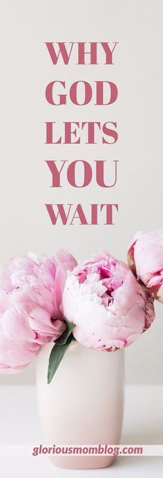 Why God lets you wait: do you ever wonder why God lets us go through trials, or why your prayers seem like they're not being answered? Find out why at gloriousmomblog.com.