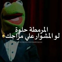 Funny Cartoon Quotes, Funny Study Quotes, Funny Arabic Quotes, Funny Comics, Mystic Messenger Characters, Latest Funny Jokes, Kermit, Mood Quotes, Puns