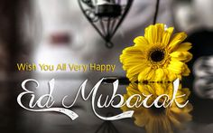 Eid ul Fitr 20171st Day Wishes SMS Messages. Wishing to eid the fitr 2017 method no more practical than you want by means of your own words. There is a network packet of loving material consisting of r wishing sms, eid greeting messages in different languages. Eid ul Fitr 2017 1st Day Wishes can …