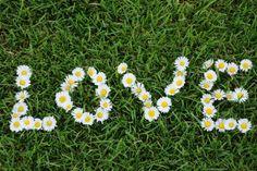 15 Amazing Daisy Themed Wedding Ideas - | eWeddingFavors.com Blog