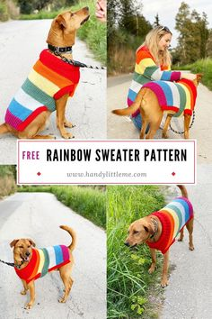 Dog jumper knitting pattern with rainbow stripes. Make your dog a colourful rainbow sweater that will make people smile on their daily walks. Crochet Dog Clothes, Crochet Dog Sweater, Jumper Knitting Pattern, Dog Sweater Pattern, Knitted Cat, Pet Clothes, Dog Clothing, Crochet Pattern, Large Dog Sweaters