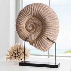 Kaleho Shell with Stand. Reminds me of a fossil. Would be nice on the window sill.