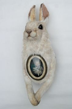 Fabric sculpture by Annie Montgomerie Photographie Post Mortem, Memento Mori, Bad Taxidermy, Creepy Dolls, Weird And Wonderful, Art Dolls, Artwork, Rabbits, Bunnies