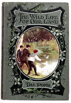 michaelmoonsbookshop:  The Wild Life of Our Land; The Pond c1910