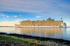 Oasis of the Seas. #cruise