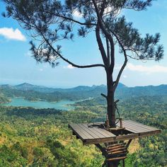 Wisata Alam Kalibiru di Kulonprogo, DI Yogyakarta Tree House Designs, Natural Scenery, Blue Lagoon, Beautiful Places, Places To Visit, Around The Worlds, Landscape, Wallpaper, Outdoor Decor