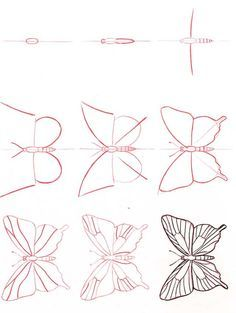 step-by-step how to draw a butterfly art images - Google Search
