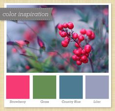 Red, Green, Blue & Purple Color Palette 30 by Sarah Hearts