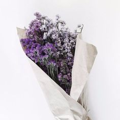 purple & white flowers.