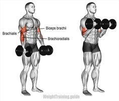 La imagen puede contener: 2 personas – Fitness&Health&Gym For Women Bicep And Tricep Workout, Forearm Workout, Dumbbell Workout, Gym Tips, Gym Workout Tips, Aerobics Workout, All Body Workout, Planet Fitness Workout, Fitness Diet