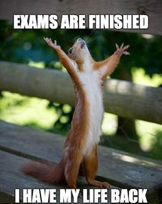 Finally Free #Exams, #Finish
