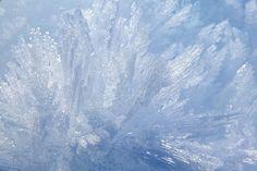 ice feathers --rime ice