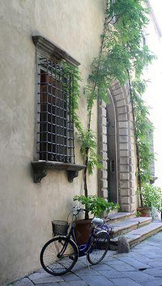 Italian Scene -  Security bars never looked sooooo beautiful
