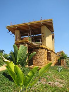 Beautiful Farm, Most Beautiful, Ant Colony, Tropical Birds, Climbing, Pergola, Hotels, Outdoor Structures, Landscape