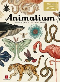Aprende cómo han evolucionado las especies. Echa un vistazo al laboratorio de disección y descubre la gran variedad de seres vivos que pueblan la Tierra… Entra para explorar el reino animal en su máximo esplendor. (A partir de 10 años)
