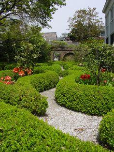 Charleston Backyards (Gardens)
