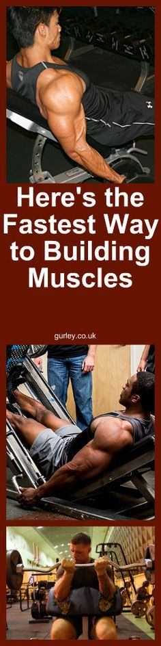 Here s the Fastest Way to Building Muscles