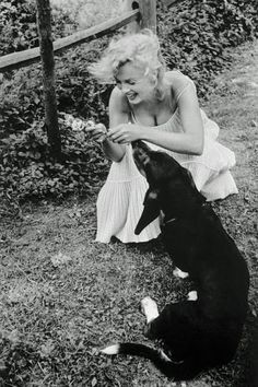 Marilyn Monroe playing with her dog Hugo, 1957.