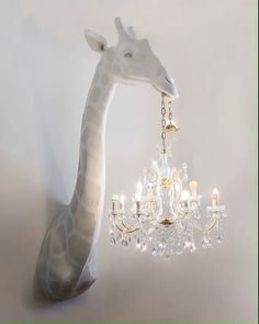 Likes, 54 Comments - Home Home Decor Inspiration, Giraffe, Kids Room, Chandelier, Holidays, Iraq Baghdad, Photography, Goals, Mini