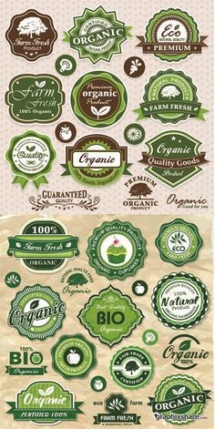 Eco and Organic Food - Vintage Labels Vector Set #57