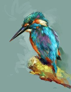 Just sketch. 365 days.: Совместная онлайн зарисовка #5: Птицы