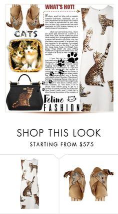 """""""Feline Fashion"""" by purplerose27 ❤ liked on Polyvore featuring Dolce&Gabbana and N°21"""