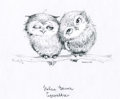 Find images and videos about picture, owl and watercolor on We Heart It - the app to get lost in what you love. Owl Bird, Pet Birds, Bird Drawings, Animal Drawings, Owl Illustration, Illustrations, Cute Owl Drawing, Drawing Ideas, Buho Tattoo