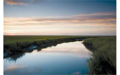 The marsh at Hunting Island State Park, South Carolina. They have pull through RV sites.